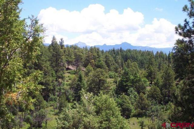 114 S Feather Court, Pagosa Springs, CO 81147 (MLS #752068) :: CapRock Real Estate, LLC