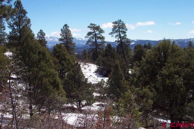 176 Fox Place, Pagosa Springs, CO 81147 (MLS #752070) :: CapRock Real Estate, LLC