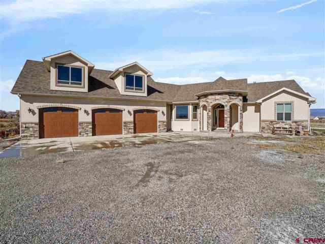 17565 B Road, Delta, CO 81416 (MLS #752094) :: CapRock Real Estate, LLC