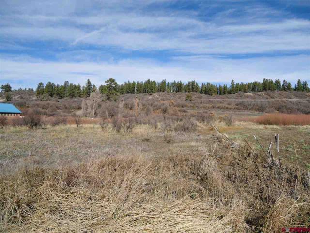 516 River Run Drive, Pagosa Springs, CO 81147 (MLS #752119) :: The Dawn Howe Group | Keller Williams Colorado West Realty
