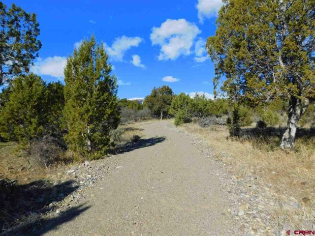 22535 Uintah Road, Cedaredge, CO 81413 (MLS #752141) :: CapRock Real Estate, LLC