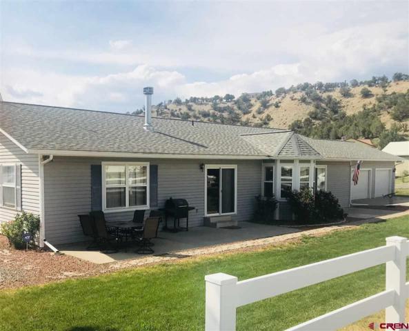 13571 Ragged Mountain Drive, Paonia, CO 81428 (MLS #752153) :: CapRock Real Estate, LLC