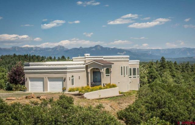 88 Peace Place, Pagosa Springs, CO 81147 (MLS #752183) :: CapRock Real Estate, LLC