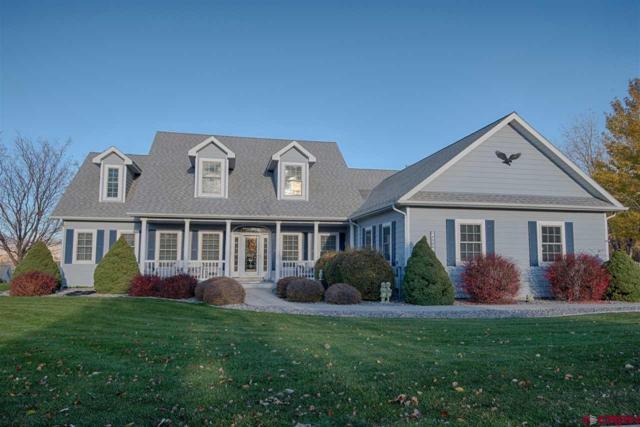 4066 Pioneer Road, Montrose, CO 81403 (MLS #752188) :: Durango Home Sales