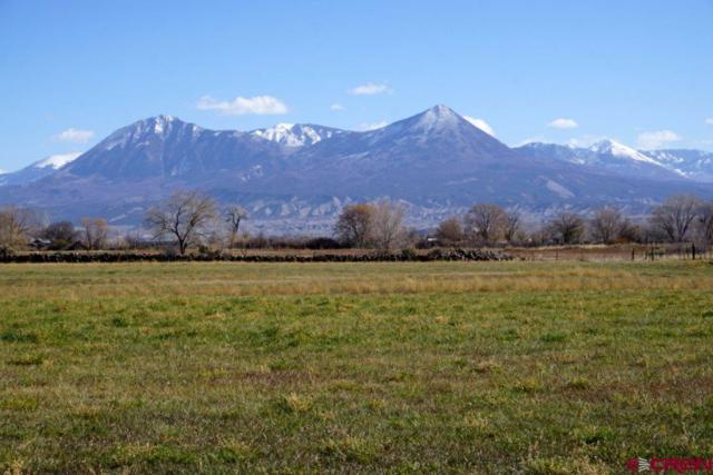 TBD 3160 Road, Hotchkiss, CO 81419 (MLS #752204) :: CapRock Real Estate, LLC