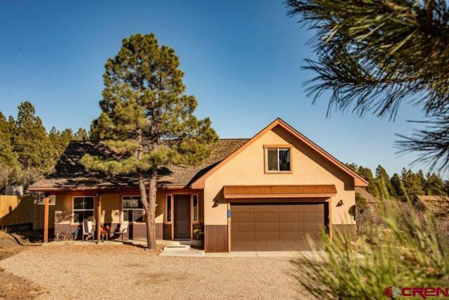 183 Caballero Drive, Pagosa Springs, CO 81147 (MLS #752205) :: CapRock Real Estate, LLC