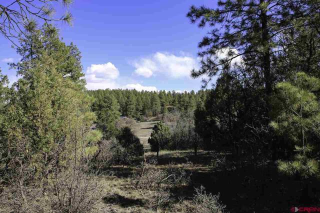 160 Deer Trail, Durango, CO 81303 (MLS #752211) :: Durango Home Sales