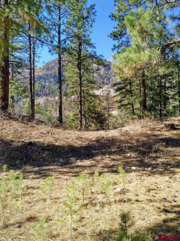 242 Glacier Cliff, Durango, CO 81301 (MLS #752240) :: Durango Mountain Realty