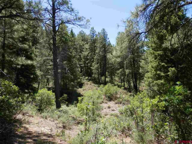 41 Haystack Lane, Pagosa Springs, CO 81147 (MLS #752248) :: Keller Williams CO West / Mountain Coast Group