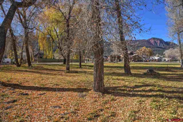 677 Hermosa Meadows Road, Durango, CO 81301 (MLS #752257) :: Durango Mountain Realty