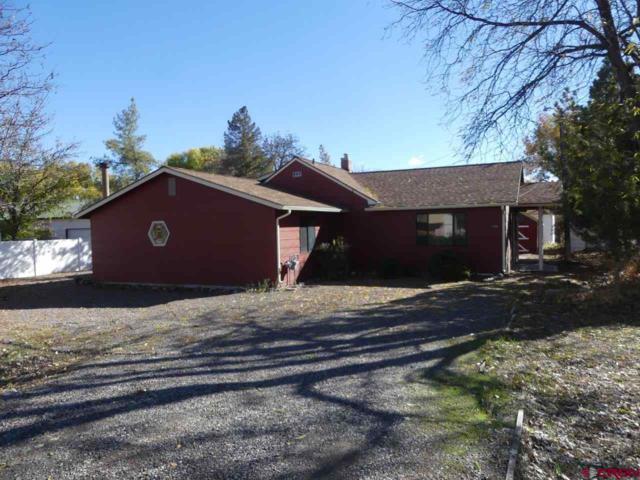 1080 E 7th Street, Delta, CO 81416 (MLS #752298) :: Durango Home Sales