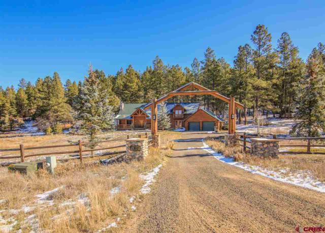 1317 Eight Mile, Pagosa Springs, CO 81147 (MLS #752301) :: CapRock Real Estate, LLC