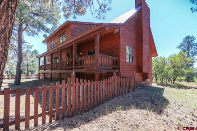 397 Appaloosa Circle, Pagosa Springs, CO 81147 (MLS #752304) :: Durango Home Sales