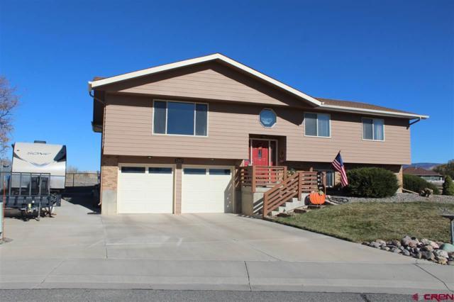 2337 James Street, Montrose, CO 81401 (MLS #752315) :: CapRock Real Estate, LLC
