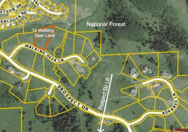15 Walking Deer Lane, Mt. Crested Butte, CO 81225 (MLS #752343) :: The Dawn Howe Real Estate Network | Keller Williams Colorado West Realty