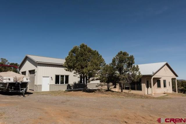 1604 Ponderosa Drive, Ridgway, CO 81432 (MLS #752384) :: Durango Home Sales