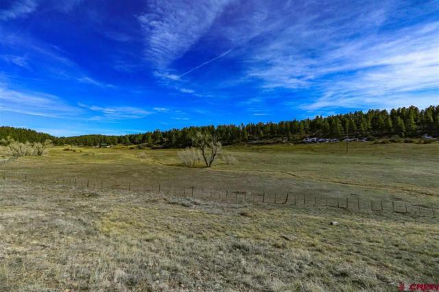43 Escobar Avenue, Pagosa Springs, CO 81147 (MLS #752393) :: Durango Home Sales