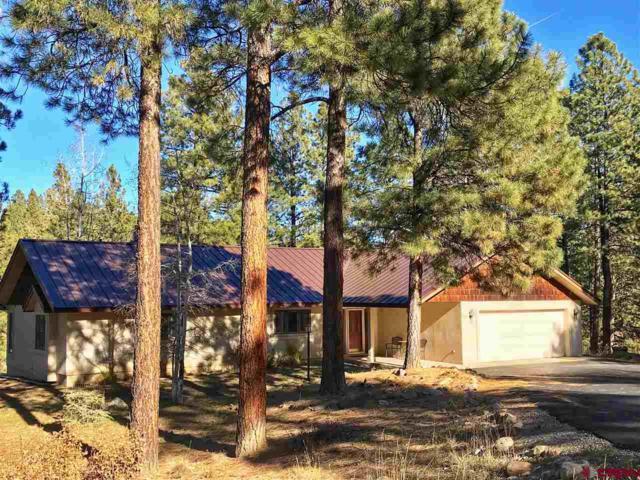 301 Iron King, Durango, CO 81301 (MLS #752421) :: Durango Home Sales