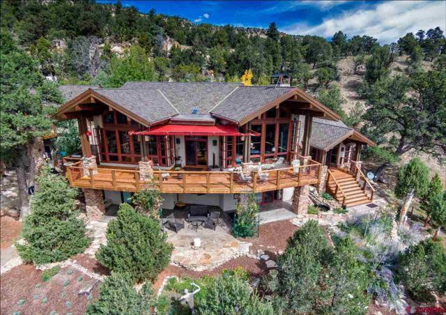 354 Pleasant Valley Drive, Ridgway, CO 81432 (MLS #752436) :: Durango Home Sales