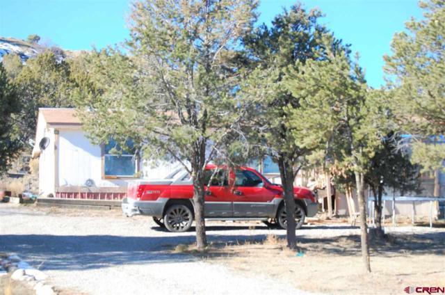 695 Camino Iglesia, Durango, CO 81303 (MLS #752446) :: Durango Mountain Realty