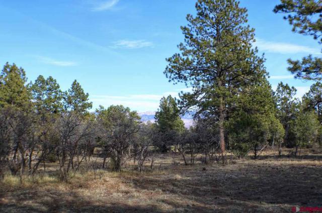 110 Puma Lane, Ridgway, CO 81432 (MLS #752452) :: Durango Home Sales