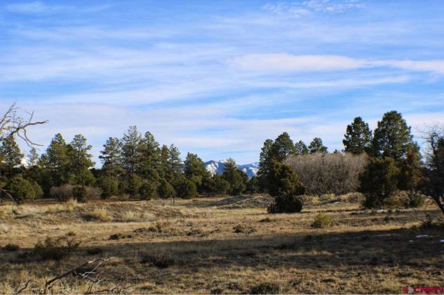 TBD Bear Cub Drive, Ridgway, CO 81432 (MLS #752453) :: Durango Home Sales