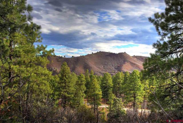 361 Edgemont Highlands Boulevard, Durango, CO 81301 (MLS #752499) :: CapRock Real Estate, LLC