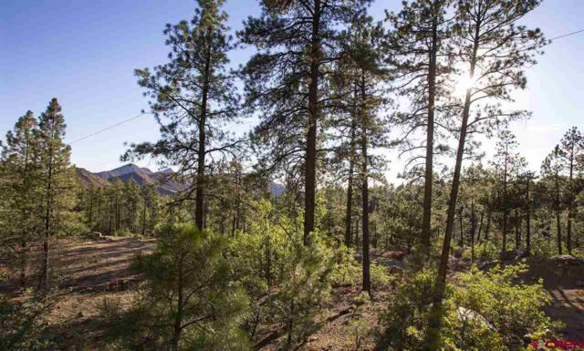 407 Edgemont Highlands Boulevard, Durango, CO 81301 (MLS #752513) :: Durango Home Sales