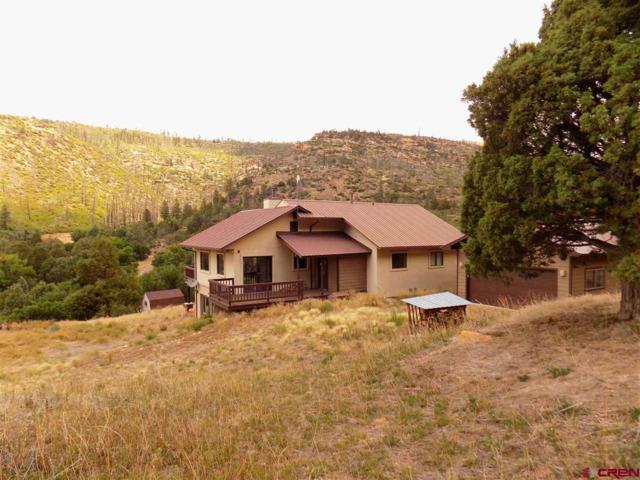 5826 Road 46, Mancos, CO 81328 (MLS #752538) :: The Dawn Howe Group   Keller Williams Colorado West Realty