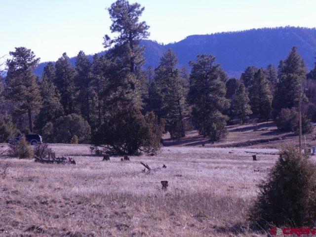 3120 Meadows Drive, Pagosa Springs, CO 81147 (MLS #752550) :: CapRock Real Estate, LLC