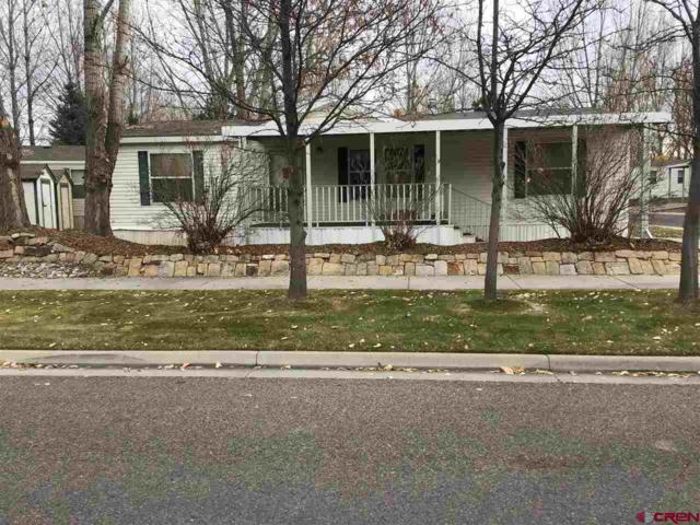 901 6530 Road #4100, Montrose, CO 81401 (MLS #752551) :: Durango Home Sales