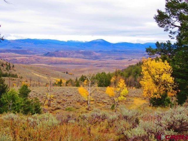 tbd Blm Road, Gunnison, CO 81230 (MLS #752559) :: The Dawn Howe Real Estate Network | Keller Williams Colorado West Realty