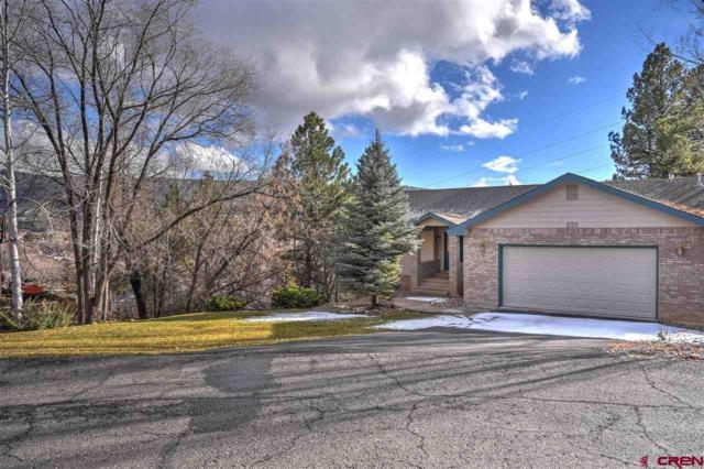 235 Valley View Circle, Durango, CO 81301 (MLS #752588) :: Durango Mountain Realty