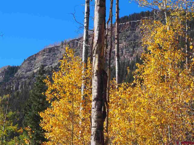 TBD N Hwy 550, Durango, CO 81301 (MLS #752595) :: Durango Mountain Realty