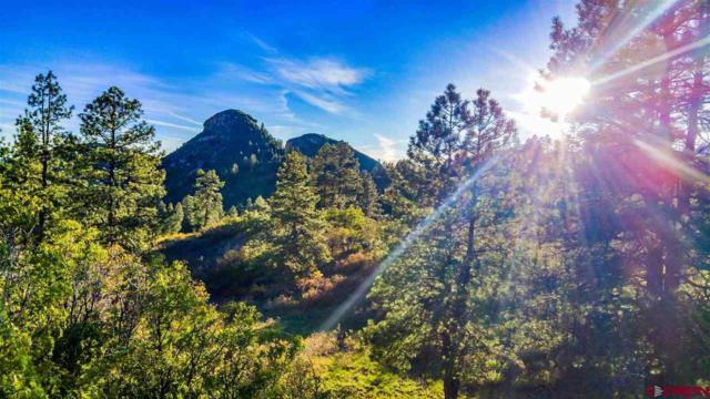 TBD (Lot 58) Wild Iris Avenue, Durango, CO 81301 (MLS #752612) :: Durango Mountain Realty