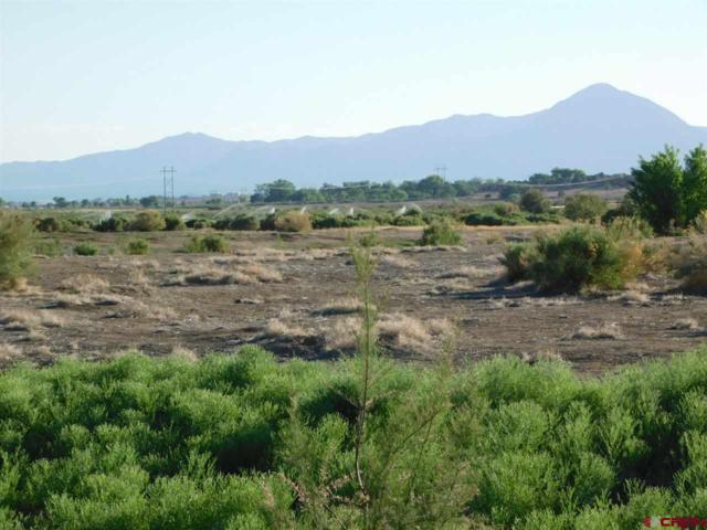 Lot 19 Road 30.1, Mancos, CO 81328 (MLS #752624) :: Durango Home Sales