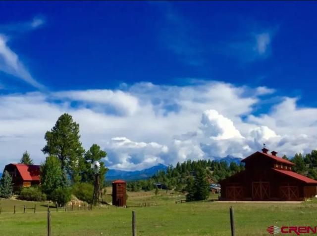976 Hersch Avenue, Pagosa Springs, CO 81147 (MLS #752630) :: Durango Home Sales