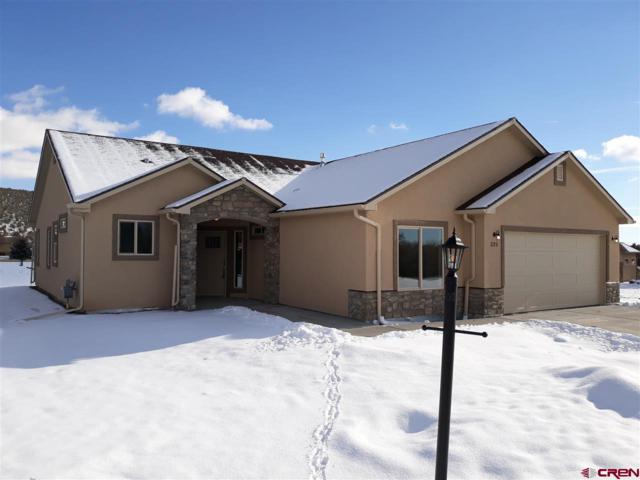 325 SE Cobblestone Court, Cedaredge, CO 81413 (MLS #752655) :: Durango Home Sales
