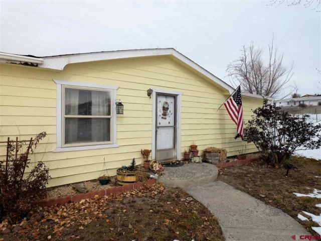 67391 Locust Road, Montrose, CO 81401 (MLS #752660) :: Durango Home Sales