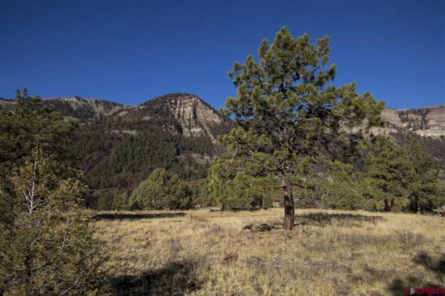 569 Glacier Cliff Drive (Lot #18), Durango, CO 81301 (MLS #752676) :: Durango Home Sales