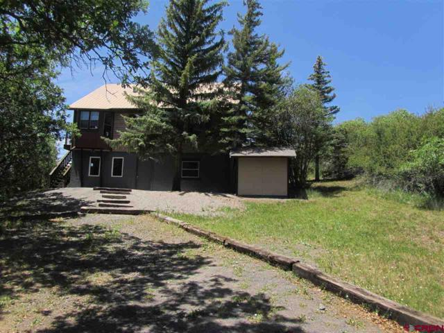 15699 Aspen Glen Lane, Collbran, CO 81624 (MLS #752688) :: Keller Williams CO West / Mountain Coast Group