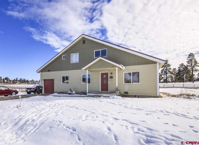 136 Sam Houston Avenue, Pagosa Springs, CO 81147 (MLS #752689) :: Durango Home Sales