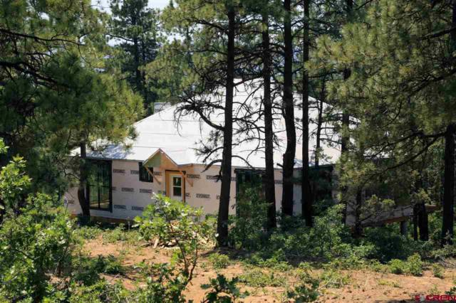 214 Justin's Road, Pagosa Springs, CO 81147 (MLS #752714) :: Durango Home Sales
