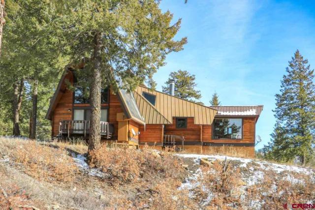 2600C Turkey Springs Road, Pagosa Springs, CO 81147 (MLS #752736) :: Durango Home Sales