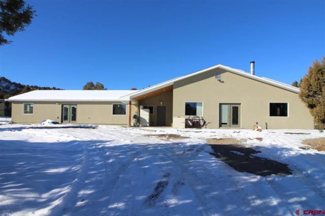 36582 K.3 Road, Mancos, CO 81328 (MLS #752752) :: Durango Home Sales