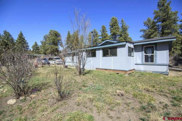 97 Westman Drive, Pagosa Springs, CO 81147 (MLS #752802) :: Durango Home Sales