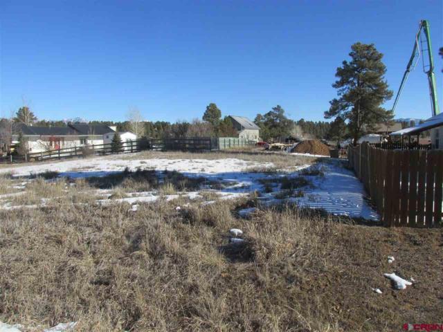 27 Roosevelt Drive, Pagosa Springs, CO 81147 (MLS #752816) :: Durango Home Sales