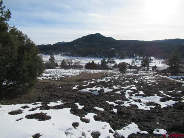 1497 Hersch Drive, Pagosa Springs, CO 81147 (MLS #752828) :: Durango Home Sales