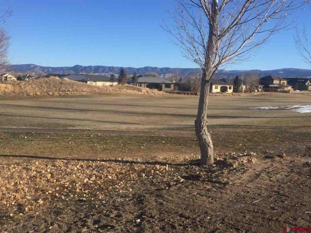 831 San Sophia Drive, Montrose, CO 81403 (MLS #752830) :: Durango Home Sales