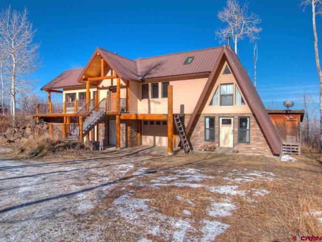 49542 E Golden Drive, Mesa, CO 81643 (MLS #752831) :: Durango Home Sales